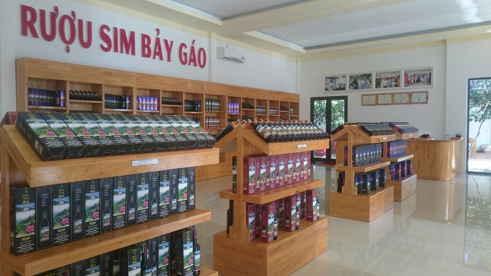 Sơ lược về lịch sử của rượu sim Bảy Gáo Phú Quốc